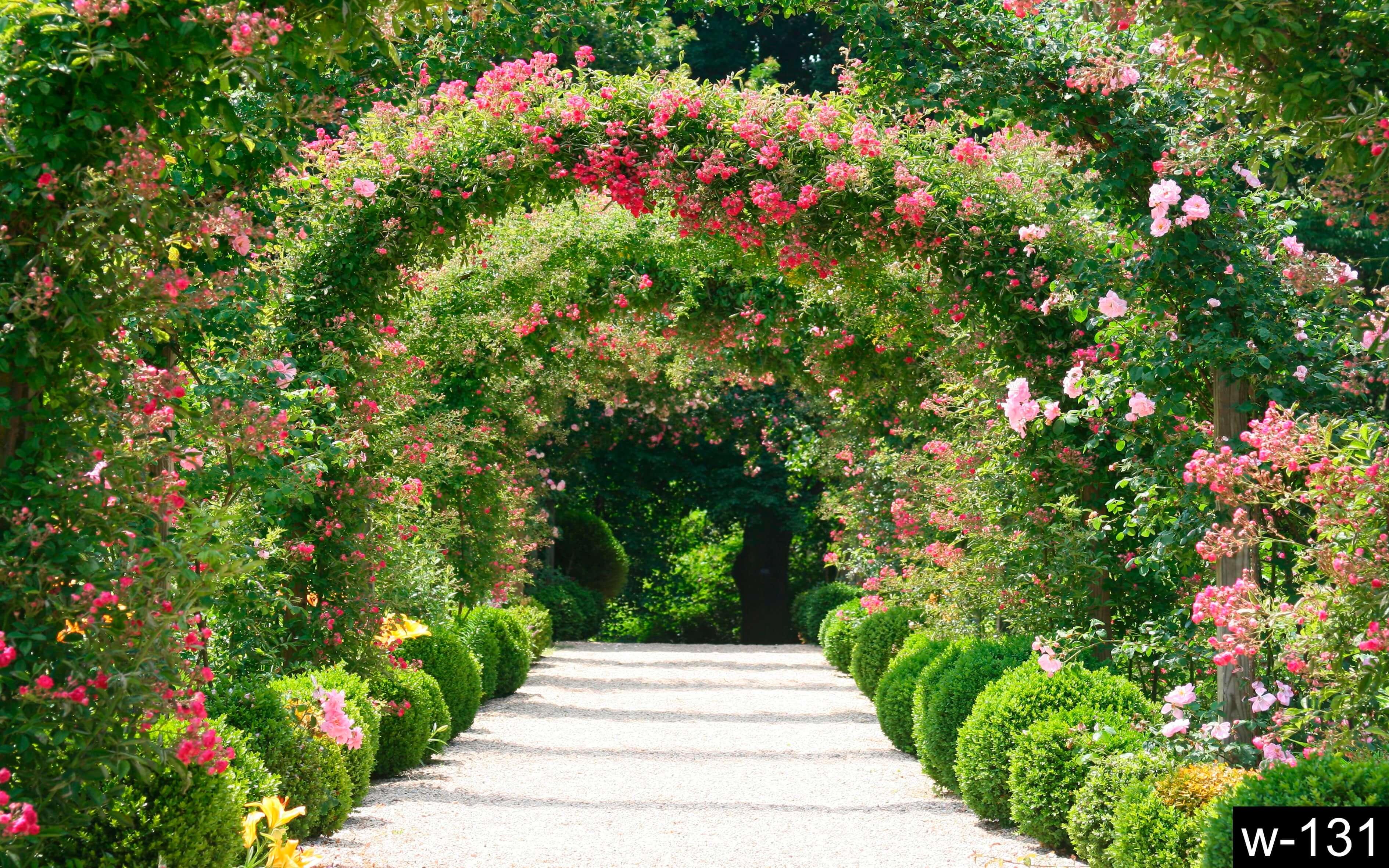 Найти картинки природа цветочные арки в саду 8